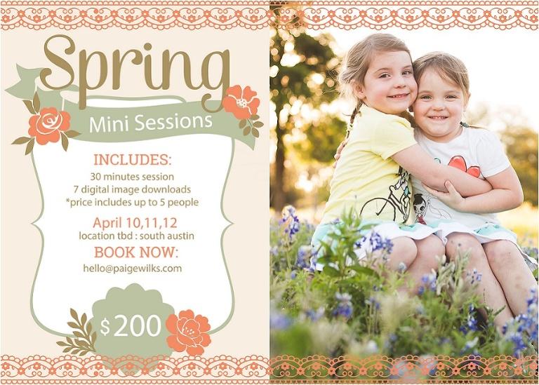 bluebonnet wildflower mini session austin texas family photographer